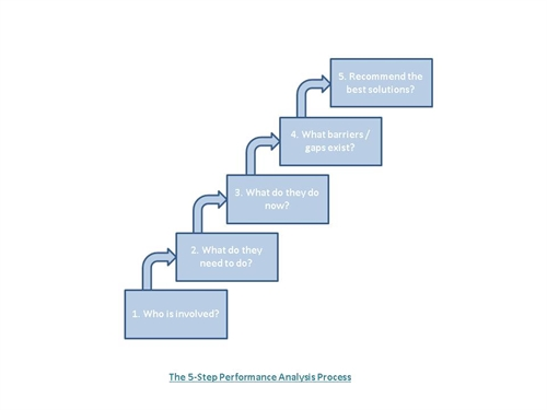 Performance Analysis Process